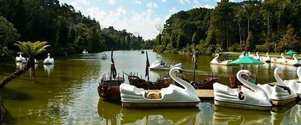 Parque do Lago Negro